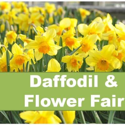 Daffodil Fair.jpg