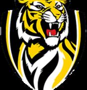 Richmond Football Club 2012 logo
