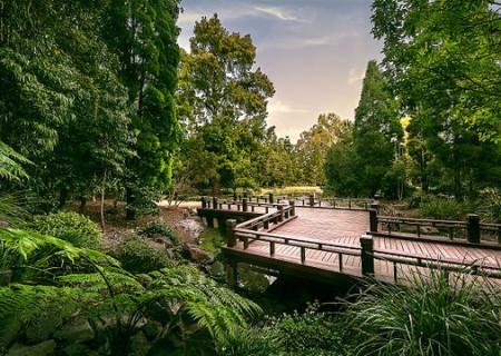 640px-Nerima_Gardens_Boardwalk.jpg
