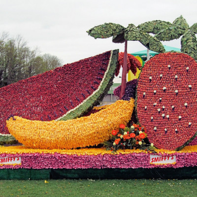Cairns Float Parade Fruit