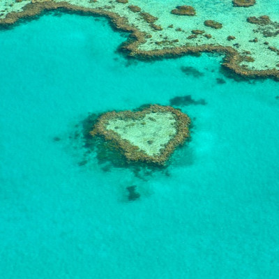great barrier reef can use free