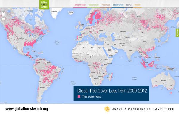 World Resources Institute, www.globalforestwatch.com