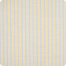 204406 Honey Fabric