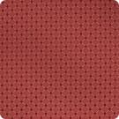 B4981 Lacquer Fabric