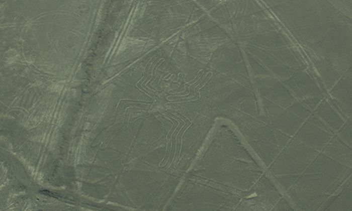 Aranha - Linhas de Nazca