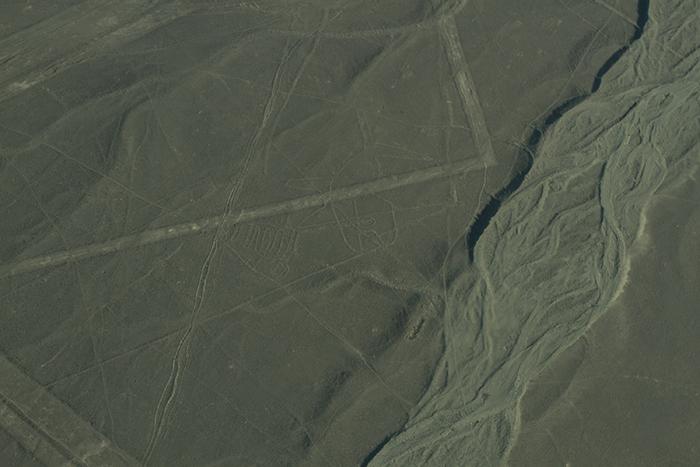 Desenho de uma Baleia - Linhas de Nazca