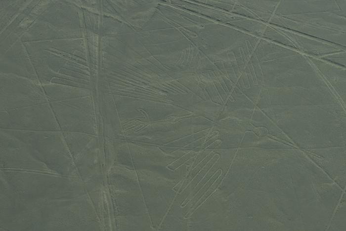 Desenho do beija-flor - Linhas de Nazca