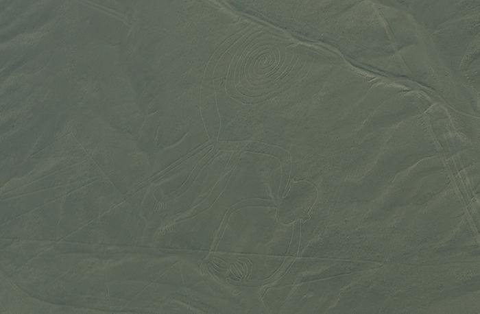 Desenho de um Macaco - Linhas de Nazca