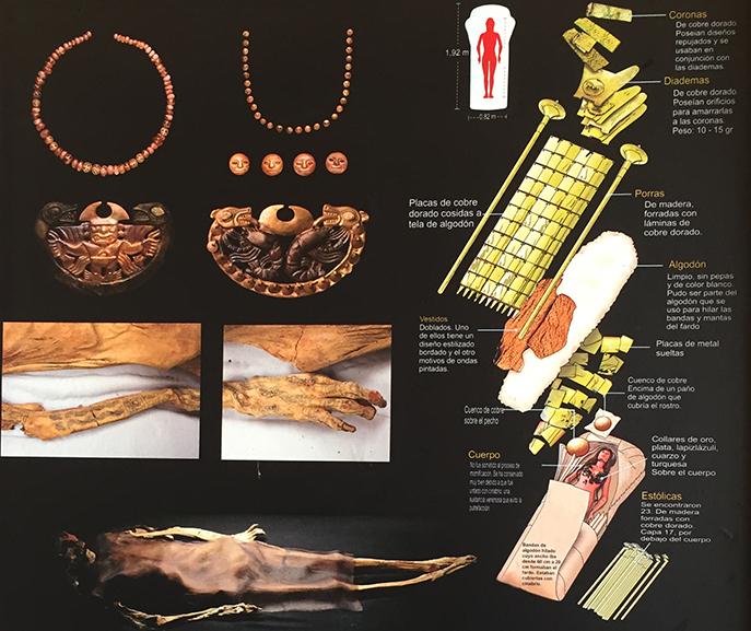Ilustração e fotos da Dama de Cao