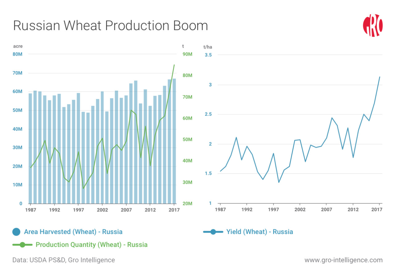 Russian Wheat Production Boom