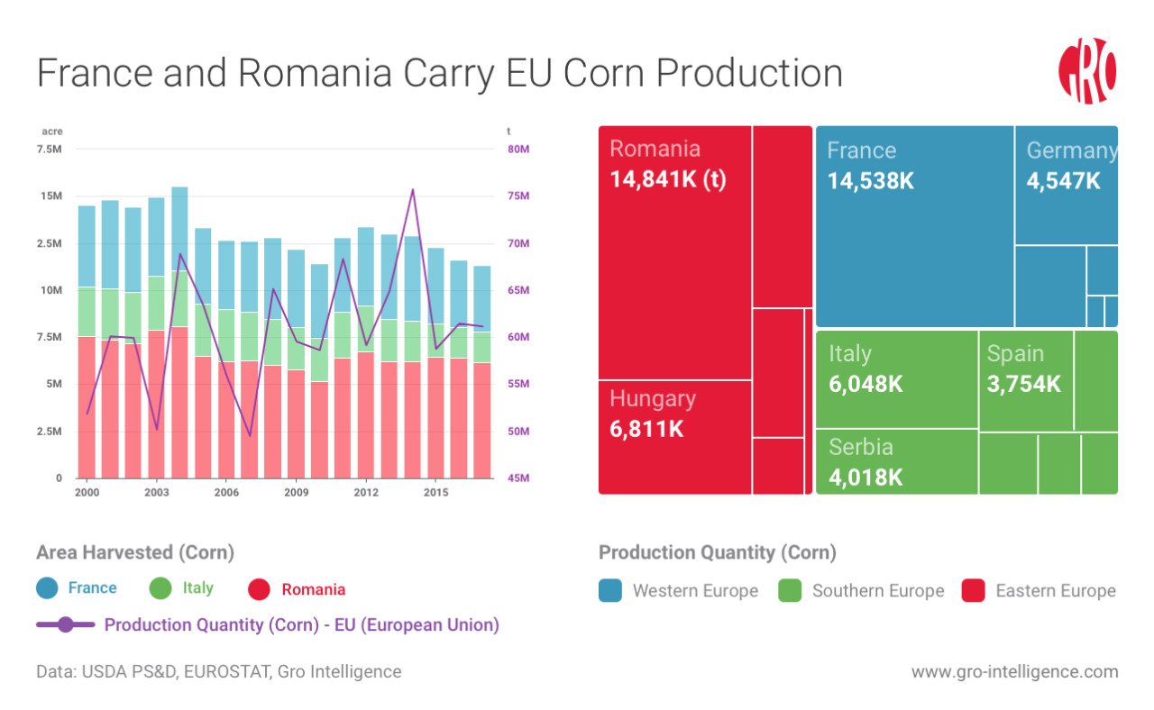 France and Romania Carry EU Corn Production