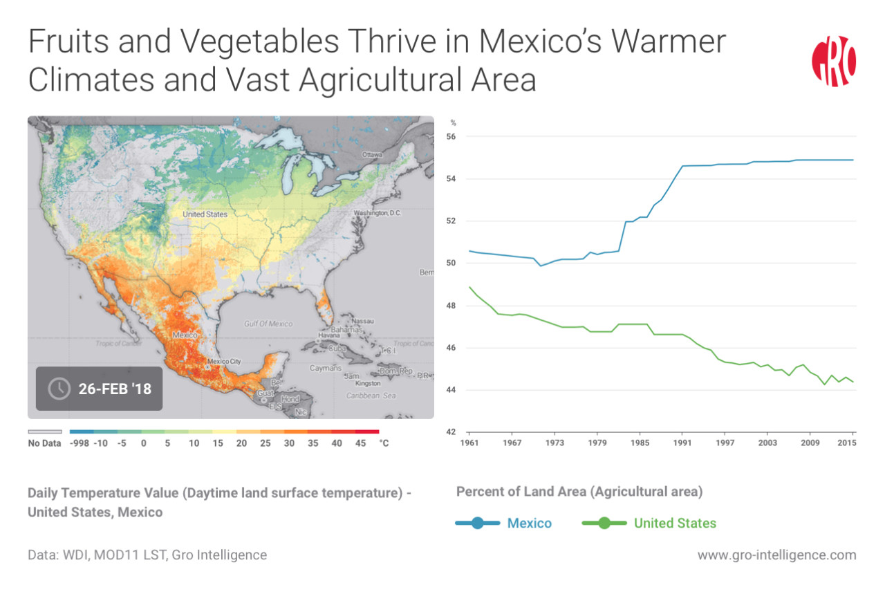 Fruits and Vegetables Thrive in Mexico's Warmer Climates and Vast Agricultural Area