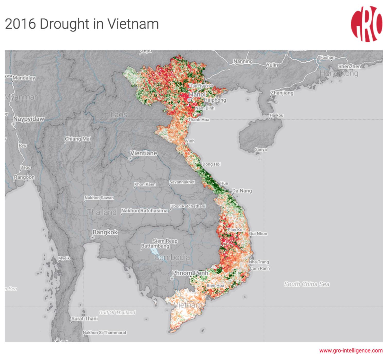 Vietnam's 2016 drought