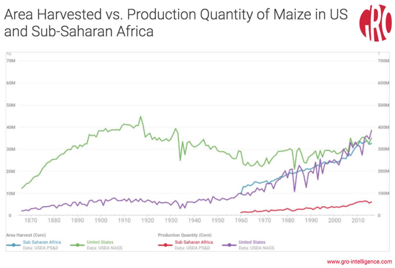 Low Corn Yields in Africa