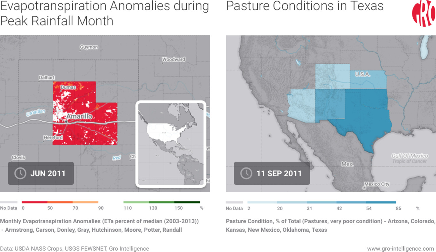 Texas, Texas dry conditions, cattle, Texas cattle, Texas drought