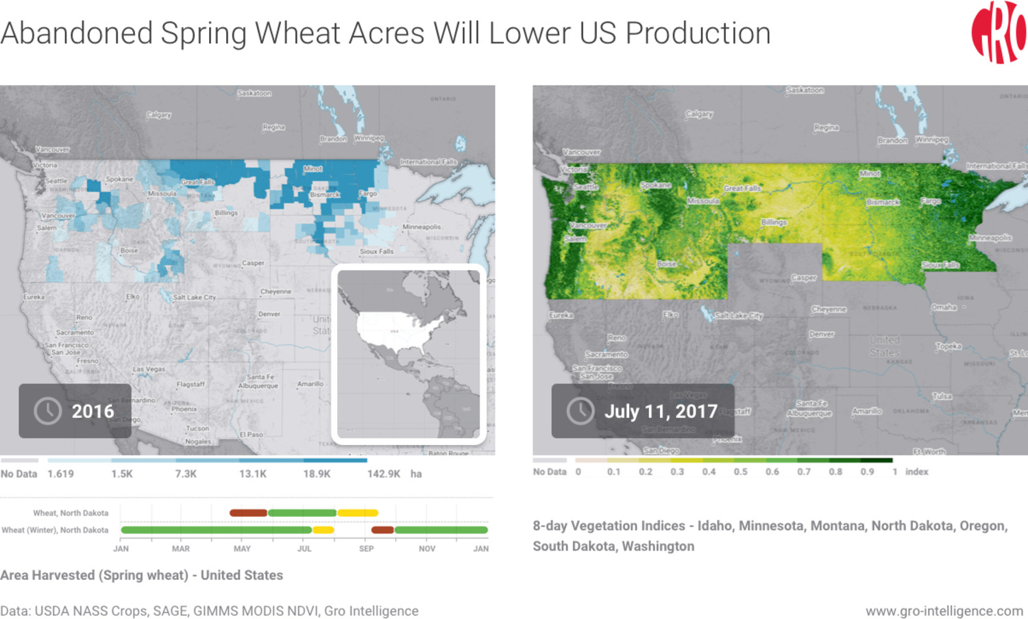 United States, US spring wheat, US wheat, spring wheat, wheat