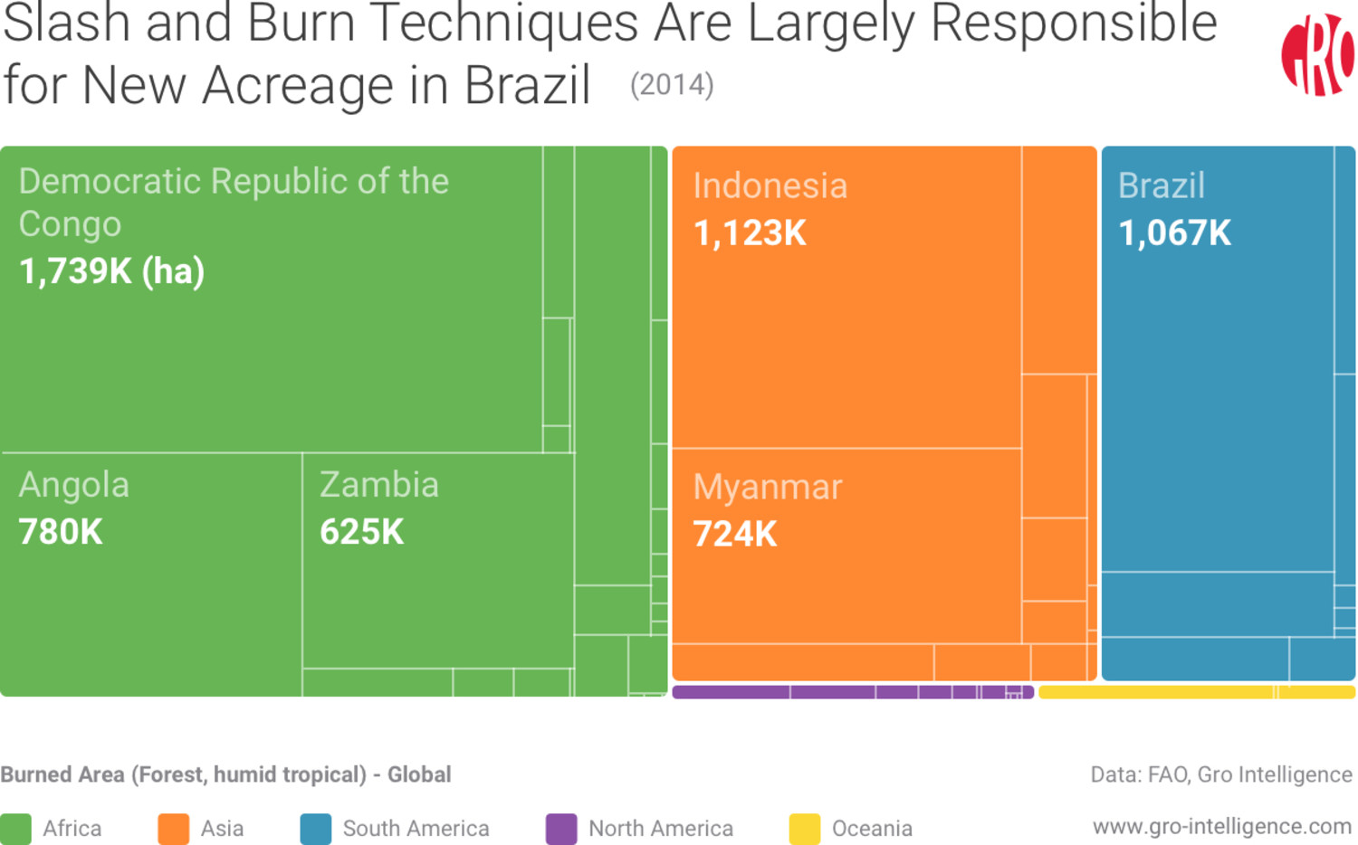 Slash and Burn Techniques Are Largely Responsible For New Acreage in Brazil