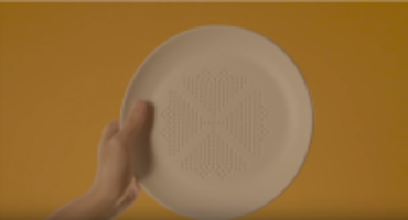 Plate To Absorb Oil