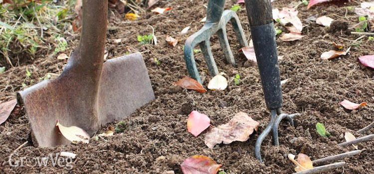 Tools for cultivating soil