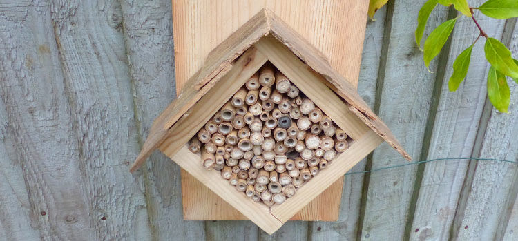 Bug hotel hanging on a fence
