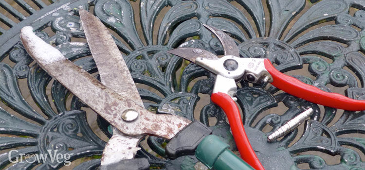 How To Care For And Sharpen Gardening Tools