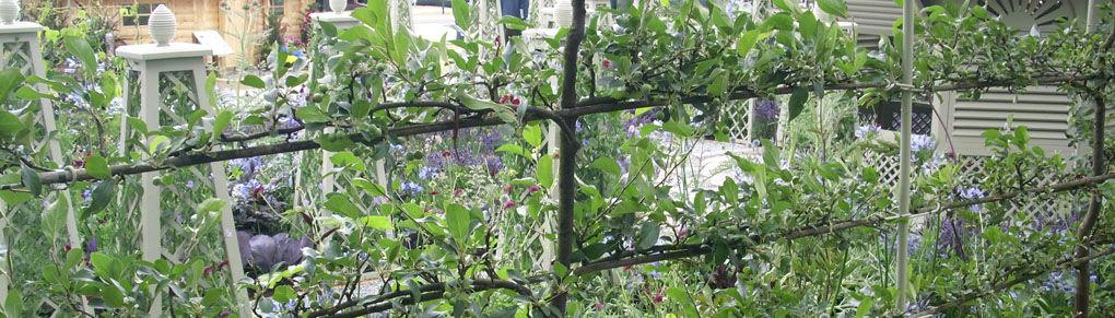Garden Design Ideas Using Fruit