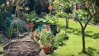 How to Plan a Bigger, Better Garden!