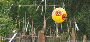Scare-eye balloon used to keep birds away from fruit and vegetables