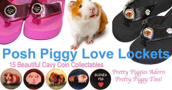 Posh Piggy Love Locket Sandals and Cavy Coins