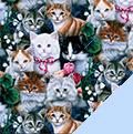 Kittens Fleece Fabric