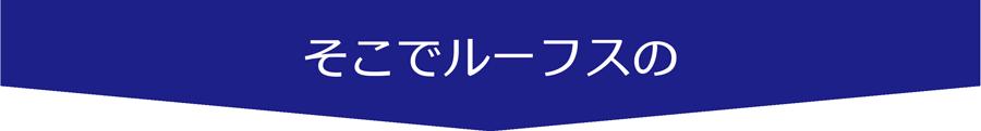 pluskasekisai3