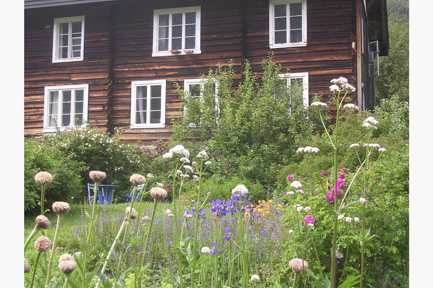 Urtehagen mot solbrun tømmervegg, i huset som diktaren Olav Aukrust voks opp i.