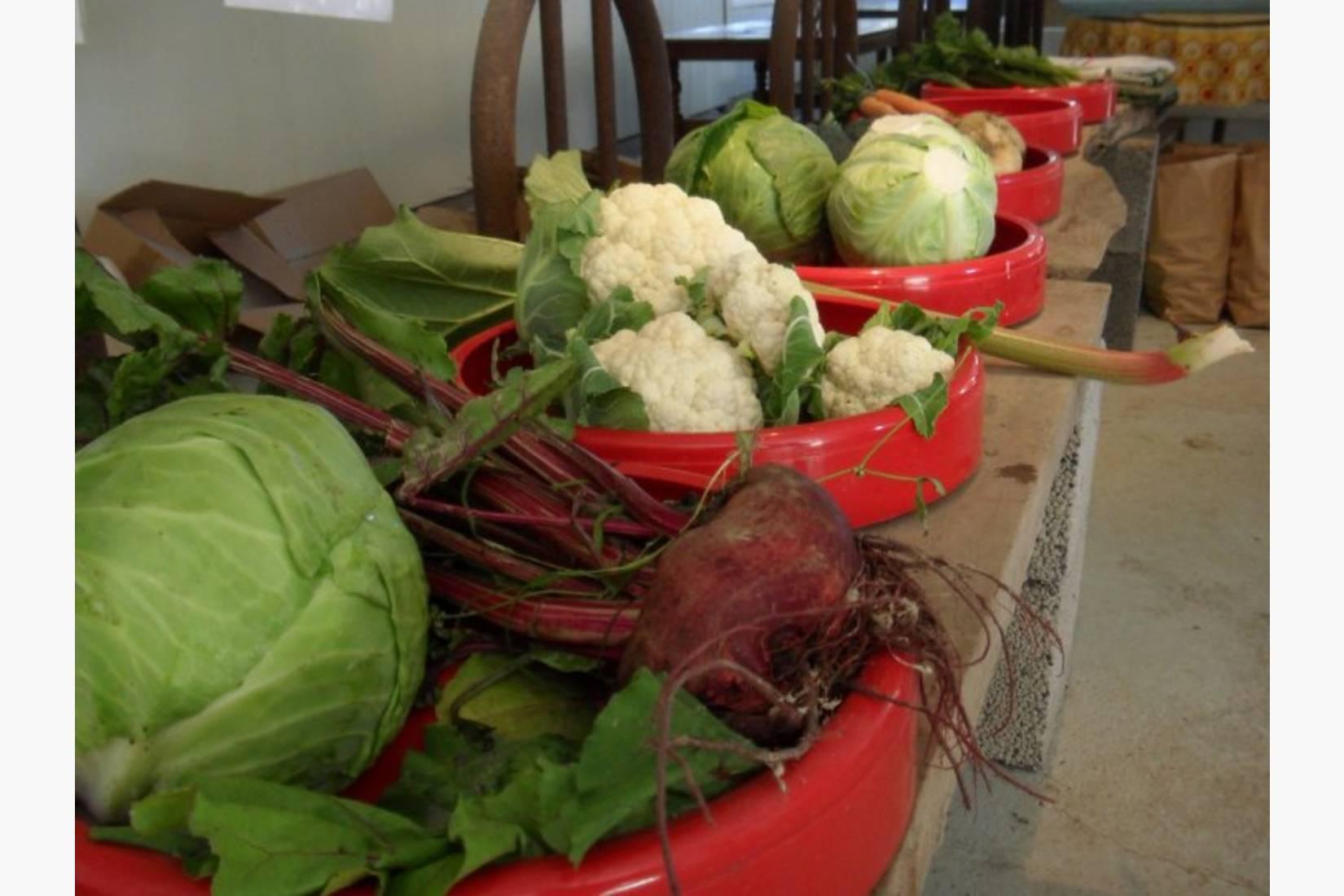 Et lite utvalg av våre grønnsaker.