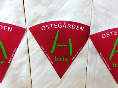 Bilde fra Ostegården