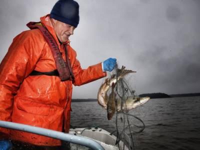 Bilde fra Vansjøfiskeren