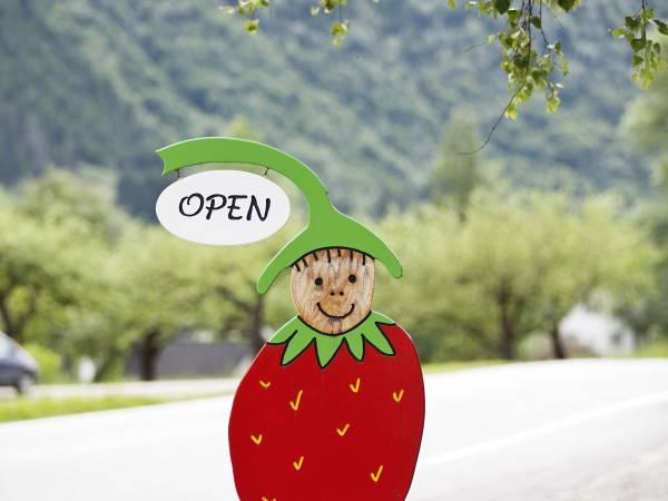 Jordbærstova