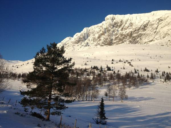 Ulsåkstølen Fjellstugu