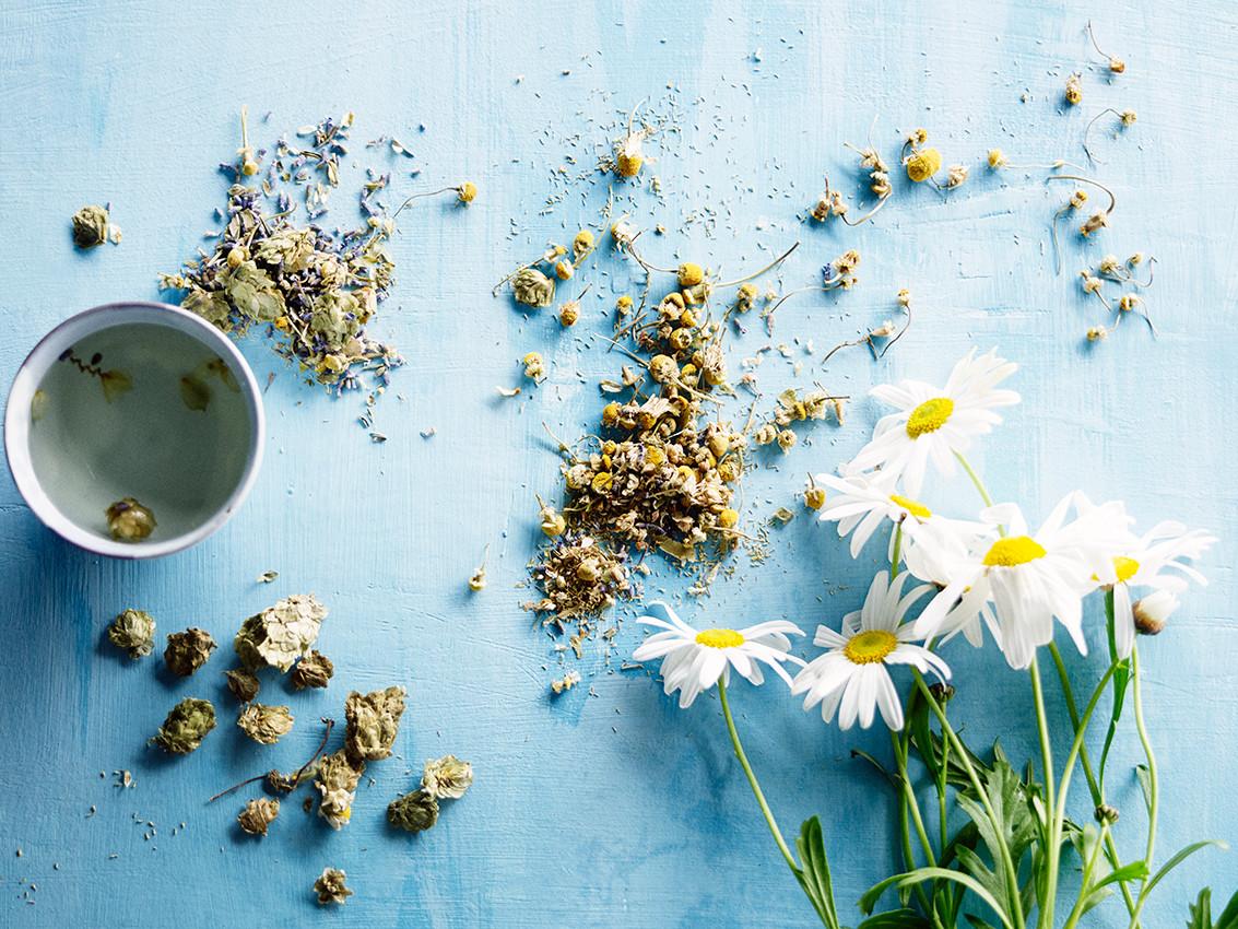 NEW No 40 Chamomile Days Organic Tea Tin by Ovvio Organics 2