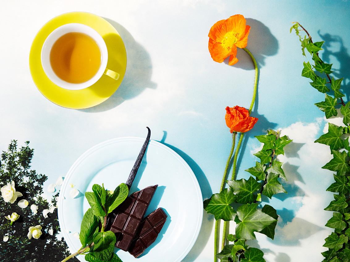 NEW No 12 Rise & Shine Organic Tea Tin by Ovvio Organics