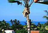Palms at Wailea #1204