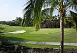 Palm Villa's Finest