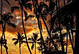 Sunsets in Paradise!