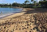 Napili Shores Resort - A206