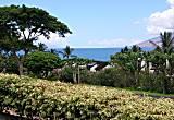 Maui Kamaole I 119