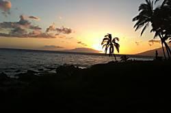 Maui Vista - #1219