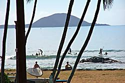 Hulapalm Maui