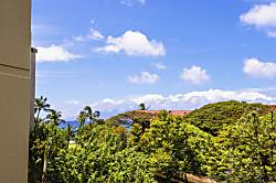 Kaanapali Shores 422 1 Bdrm