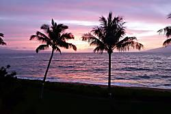 Oceanfront Valley Isle 307