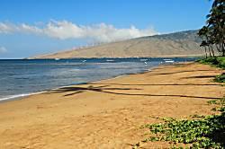 Beachfront 2 Bd Condo -2nd Flr