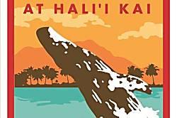 Halii Kai 24